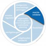 taakwiel_reactieinhibitie_2